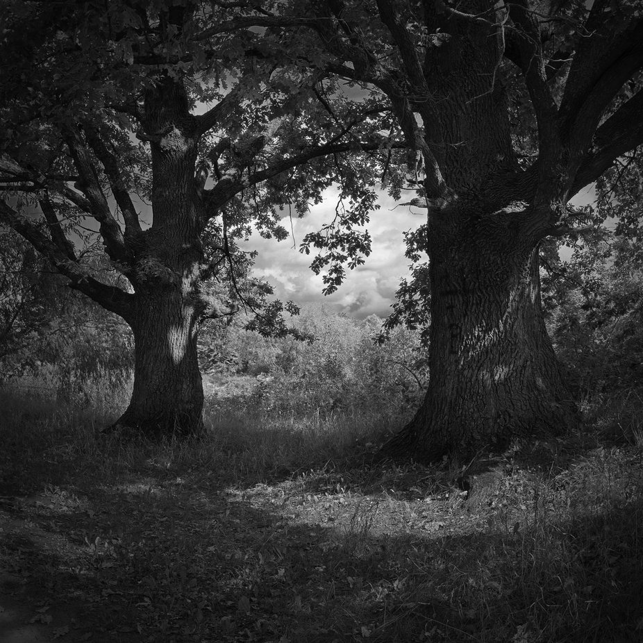 Light and shadow by Yurii_Shelest - Our World In Black And White Photo Contest