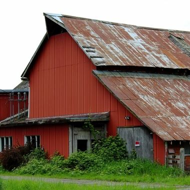 Barn Collection16