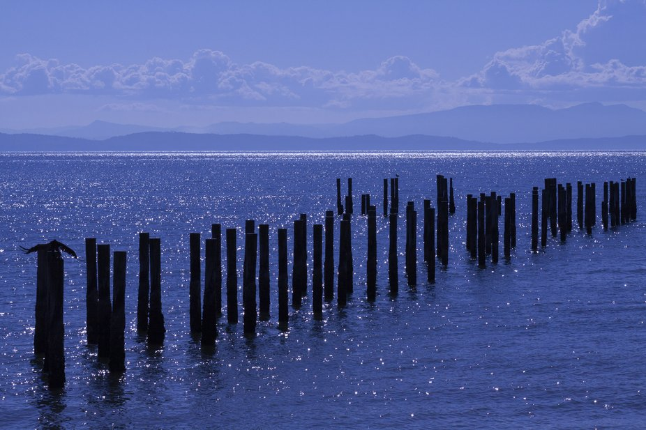 Posts waiting in Point Roberts, Washington USA 2013 Canon 50d, 85mm 1.8