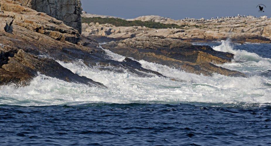 Waves crash on the rocky shoreline - Isle of Shoals - NH, USA 09-16-18
