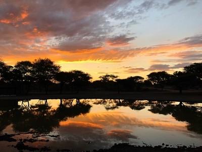 One beautiful Bushveld sunset????