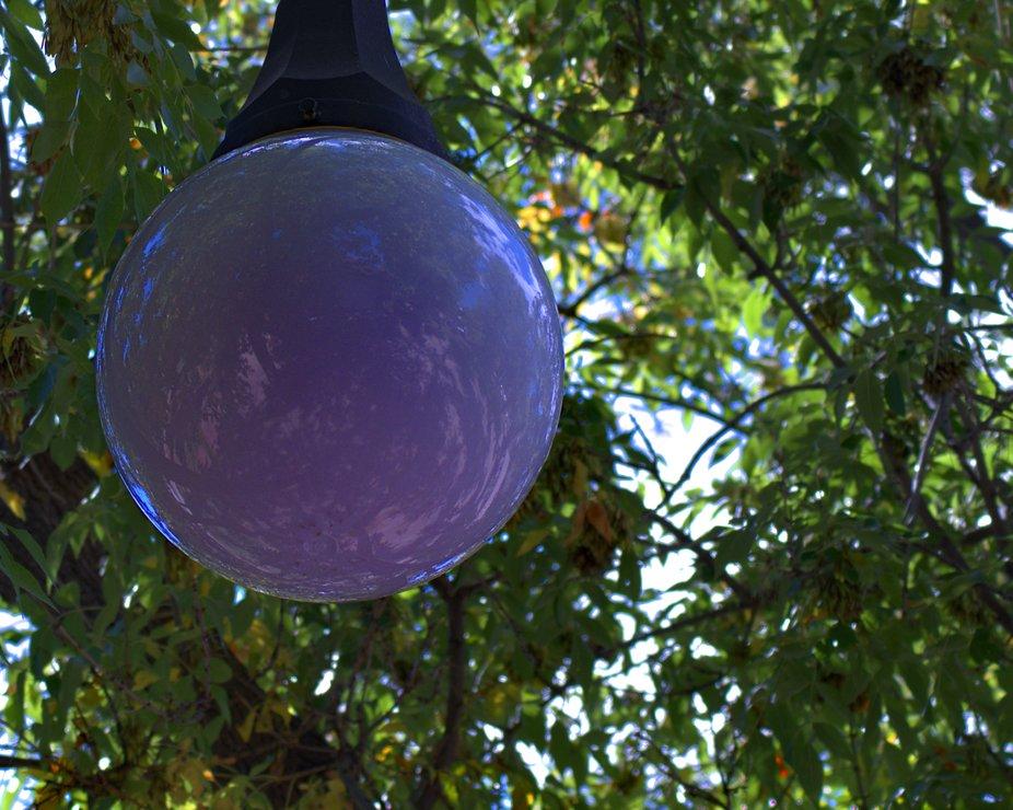 Globe of a streetlamp