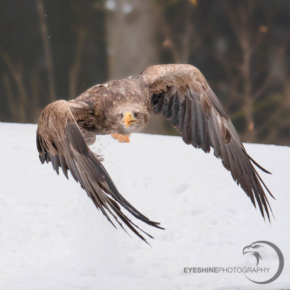 Time to go by EaglePortraits - We Love The Winter Photo Contest