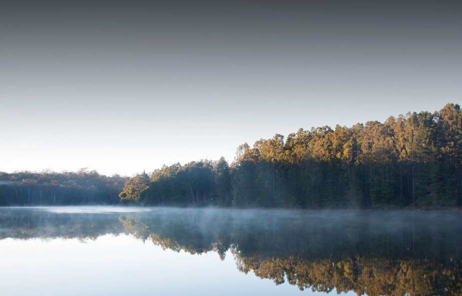 Morning mist on the lake at Quinninup, Western Australia