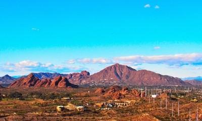 The Pink Camel of Arizona