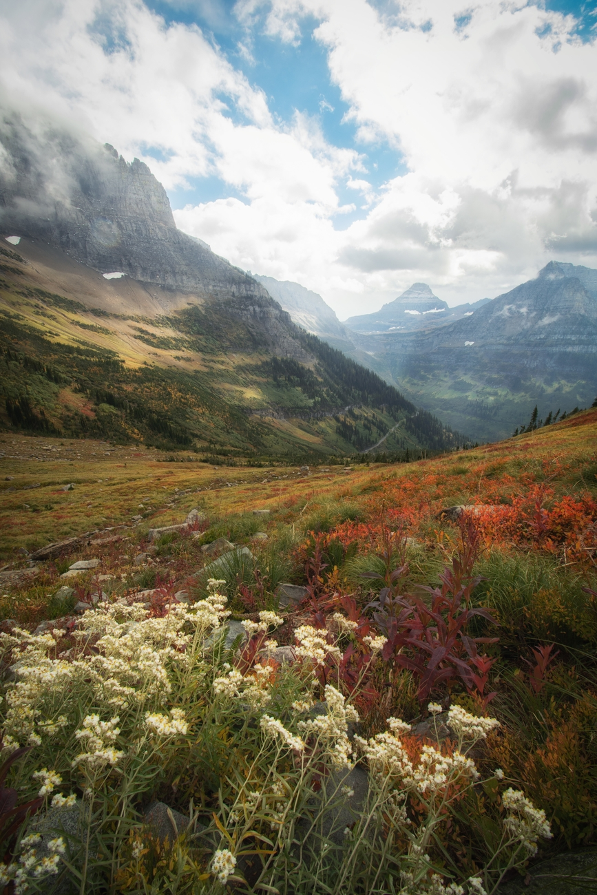 Highline Trail - Glacier National Park