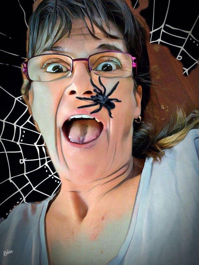 Spider alarm!