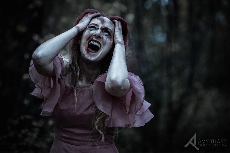 A scream in the woods