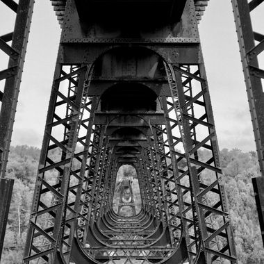 Captured at the Kinzua Bridge State Park from the viewing platform underneath the remains of the bridge... the repeating pattern makes the pic!
