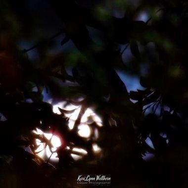 Harvest Moon peeking