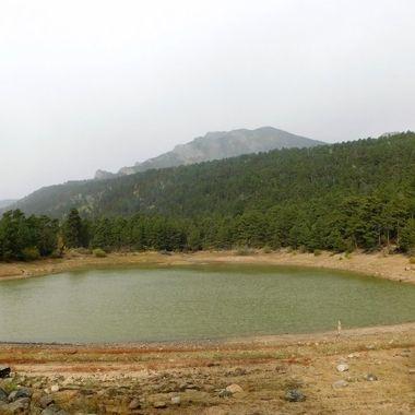 Wild Basin Pond