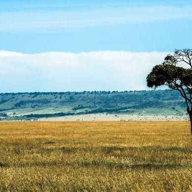 Mara Escarpment