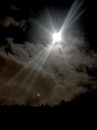 Night-shine