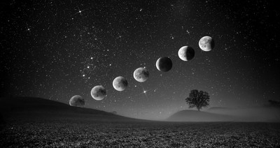 Bloodmoon Black and white