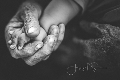"""""""One of the most powerful handclasps is that of a new grand baby around the finger of a grandfather."""" - Joy Hargrove."""