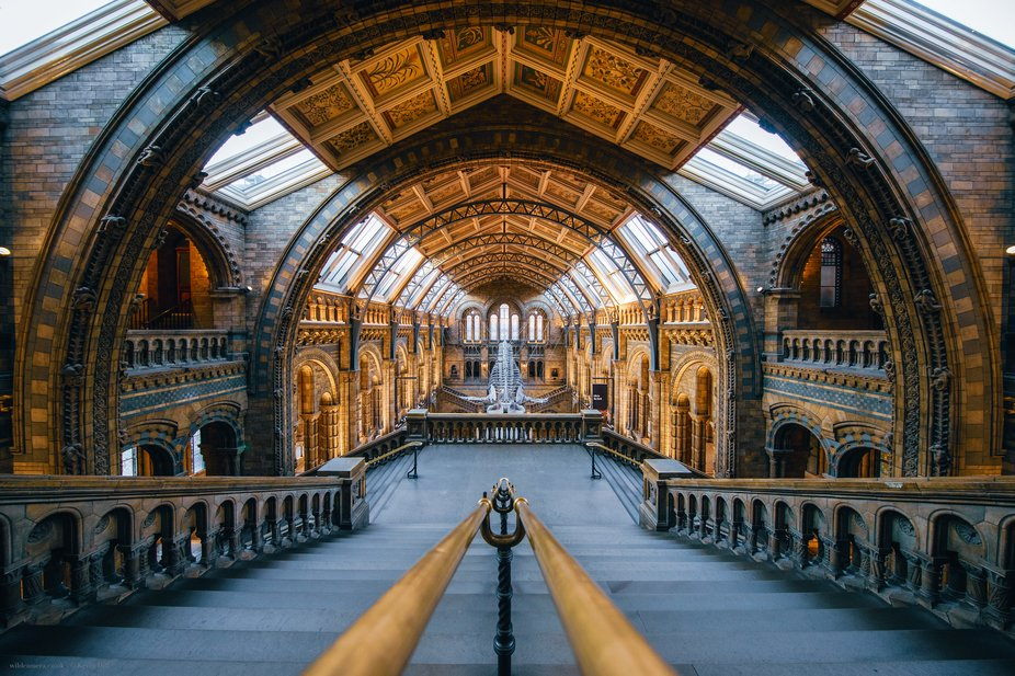 So many treasures in the stunning and truly astonishing Natural History Museum, London
