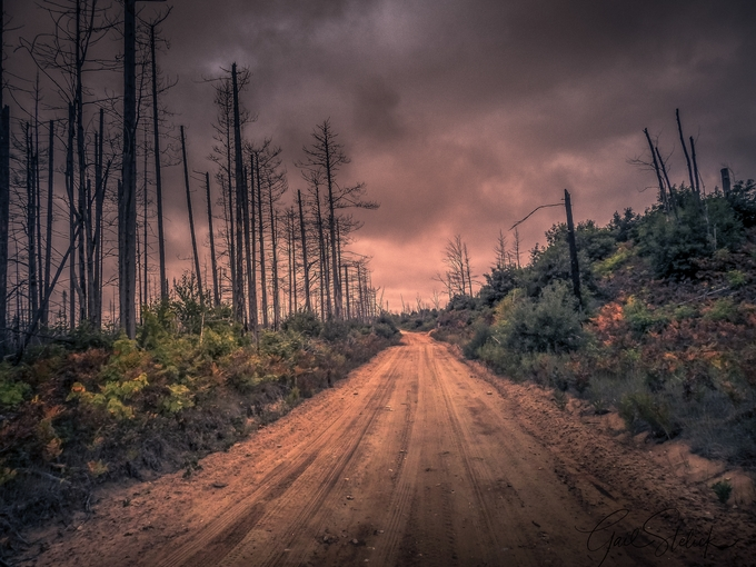 Road to Recovery by gailstelick - Straight Roads Photo Contest