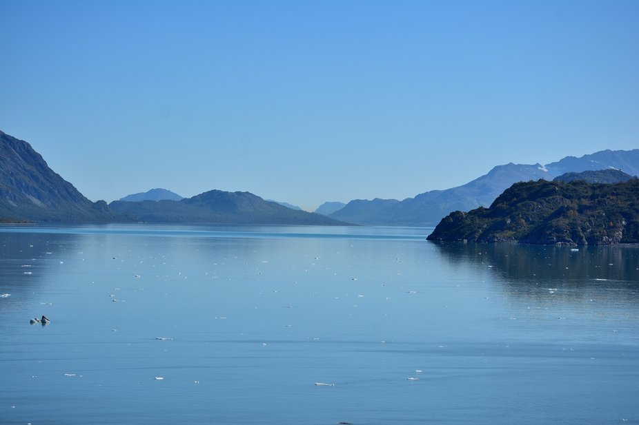 This is the bay just before the glacier. We saw Alaska on a cruise ship in Sep. Had a great time,...