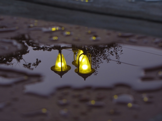 Street Light Reflection by brianwesterlingphoto - Night Wonders Photo Contest