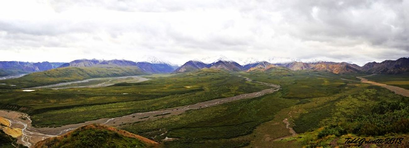 Polychrome pass at 3659' is the highest point in Denali National Park. This is a stitched image from 5 frames with the Alaska Range as the backdrop. Terminal snow covered the peaks from the night before.