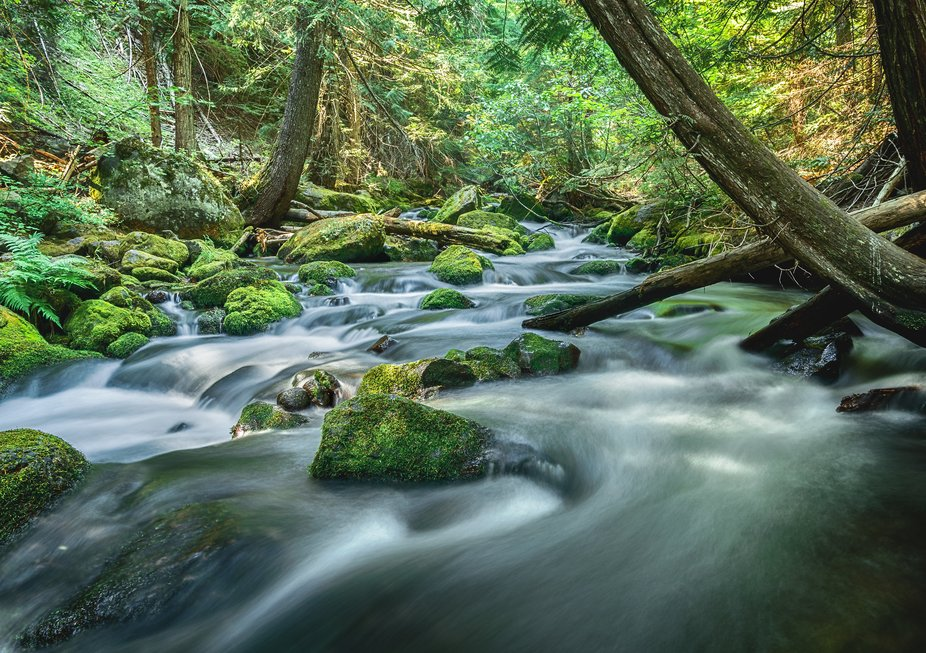 I loved watching the water rush around all these rocks, made for a great long exposure along our ...