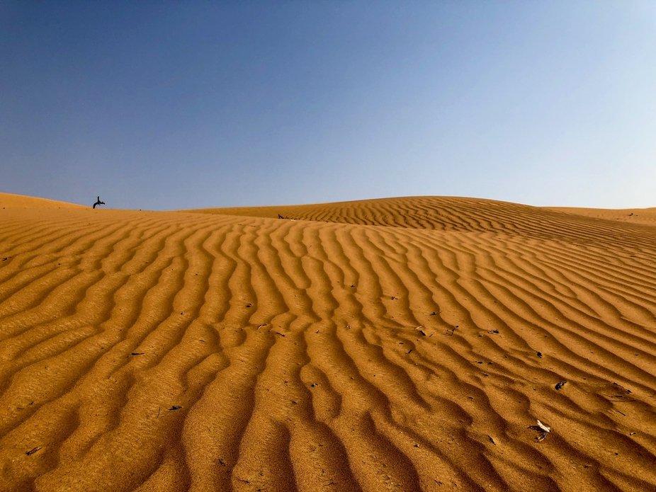 Al Wadi Desert, Ras al Khaimah, UAE