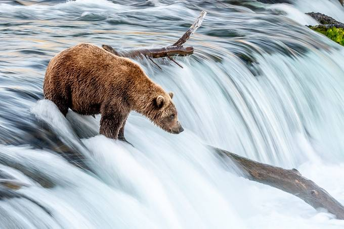 Smooth Falls by FalconEddie - Alaska The Wild Photo Contest
