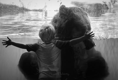 The Bear Hugger BW
