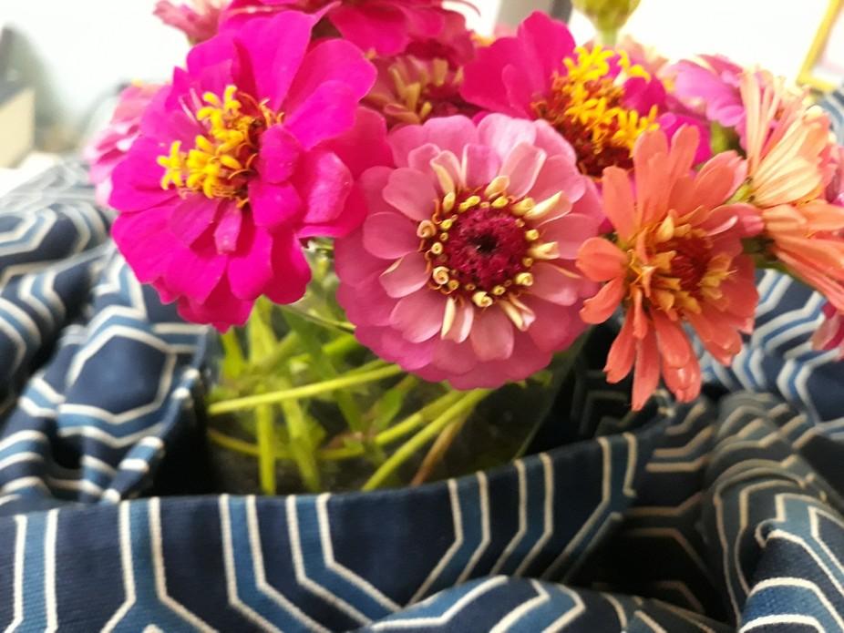 oct1 flowers