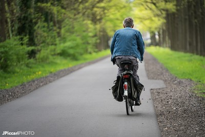 The Bike Life