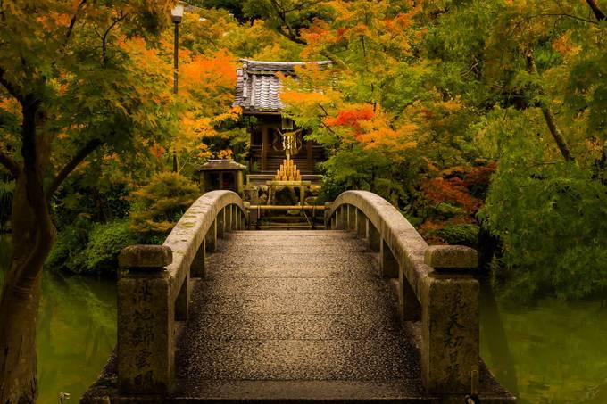 Momiji bridge by KarineEyE - The Magic Of Japan Photo Contest