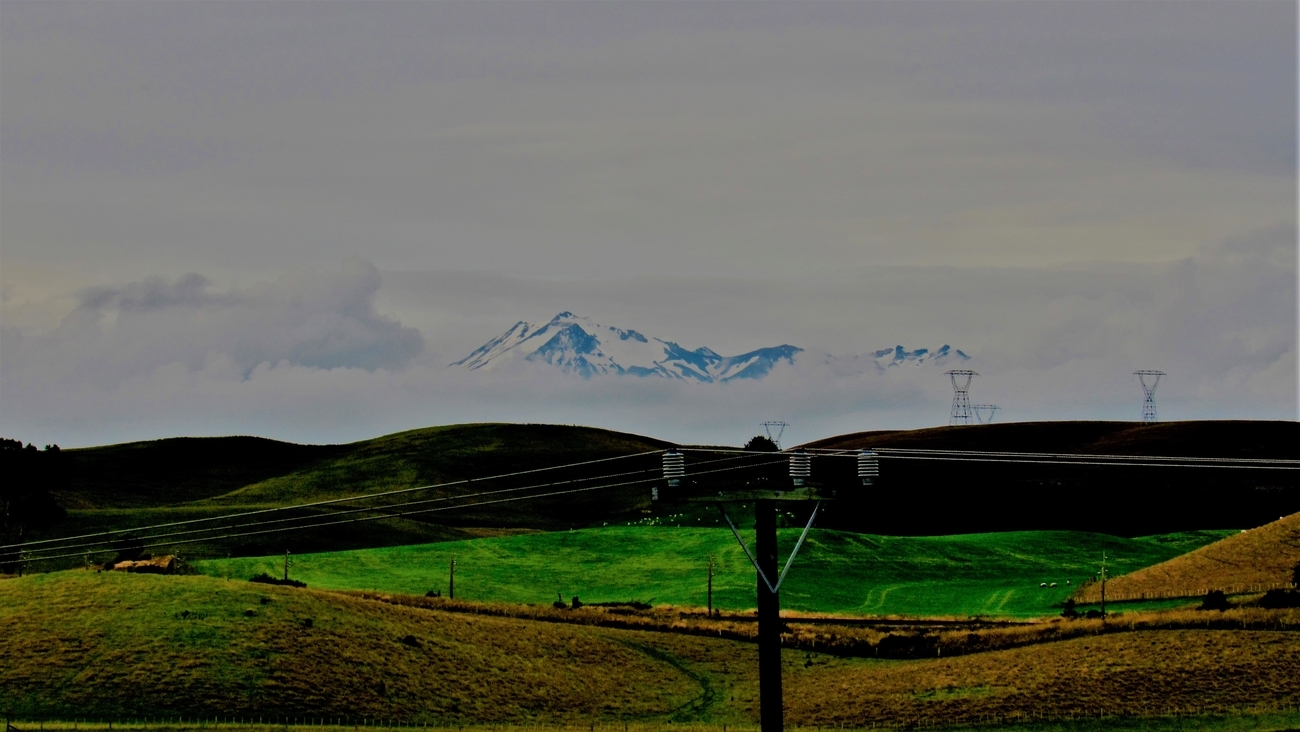 The main railway line across the North Island cuts across the fields, with the snow-capped Mt Ruapehu sitting as the backdrop