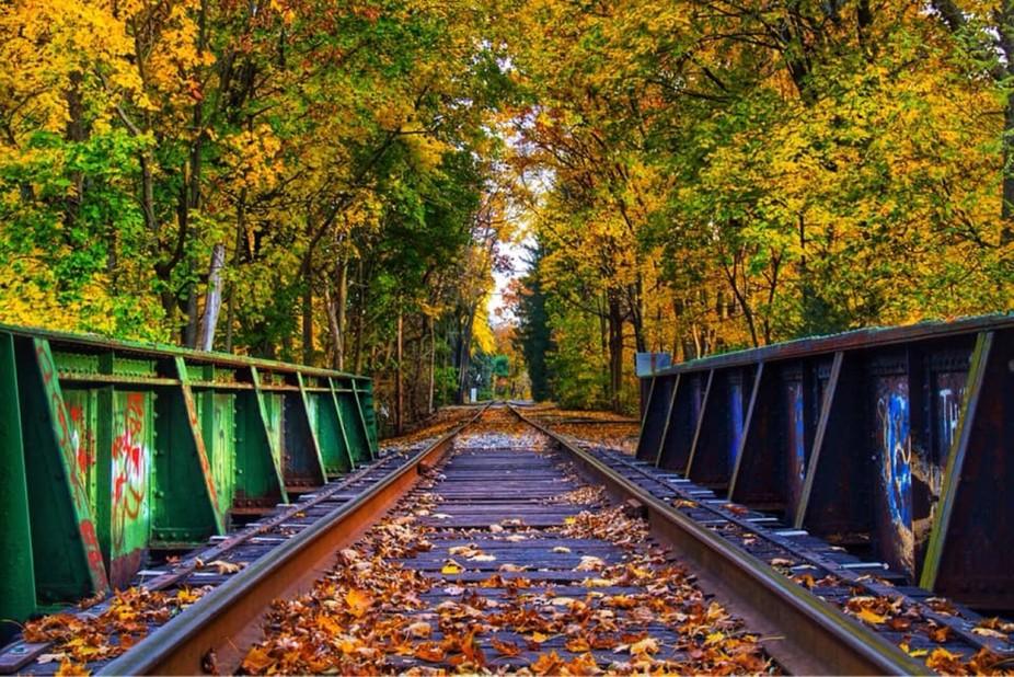 Old railroad bridge in Autumn