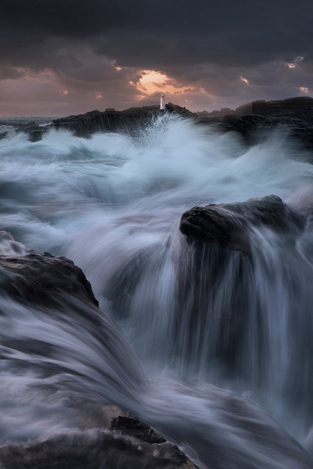 Impact  by WildSeascapes - Celebrating Earth Day Photo Contest 2019