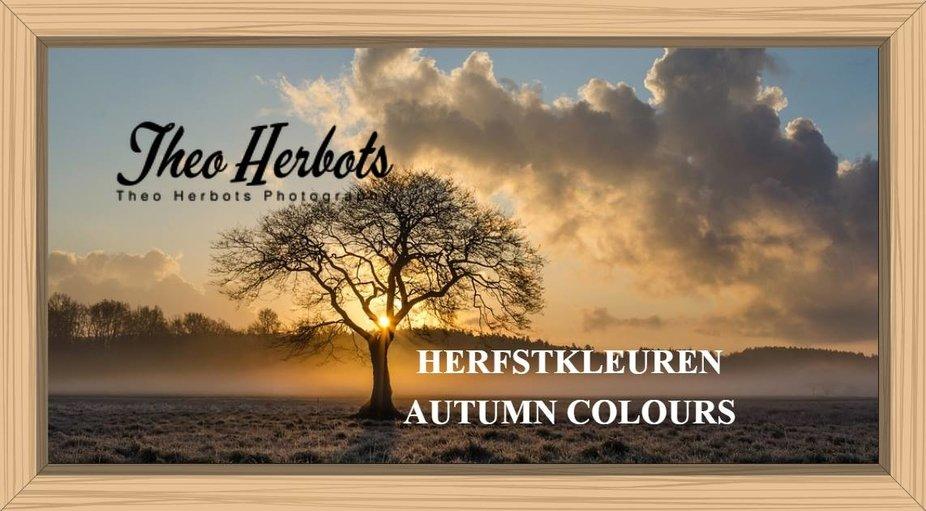 Herfst in al zijn pracht en praal Autumn in all its splendor and see more photos https://groetenuittienen.blog/2018/10/07/herfstkleuren-autumn-colours/ regards Theo-Herbots