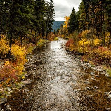 Logan Creek in Montana