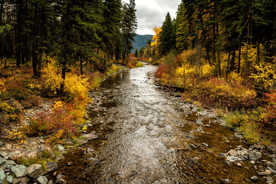 Logan Creek in Montana