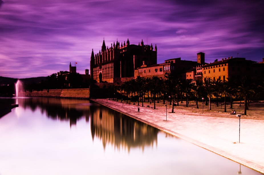 PURPLE CATHEDRAL