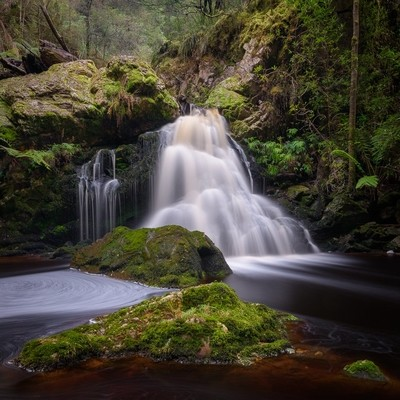 Falls and moss