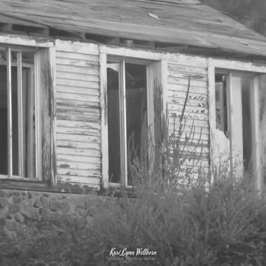left to rot