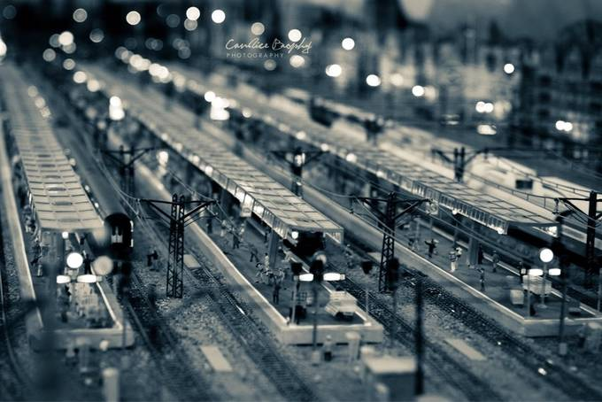 One stop by CandiceBrophy - Public Transport Hubs Photo Contest