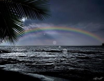 A Night in The Big Island...