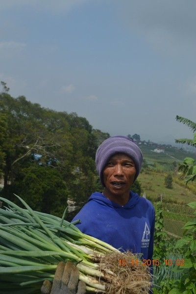 indonesian farmer's face