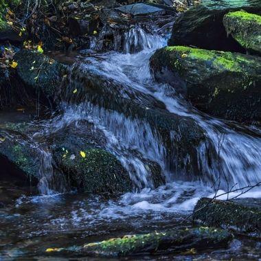 A stream in ancient woodland around Llyn Padarn at Llanberis.