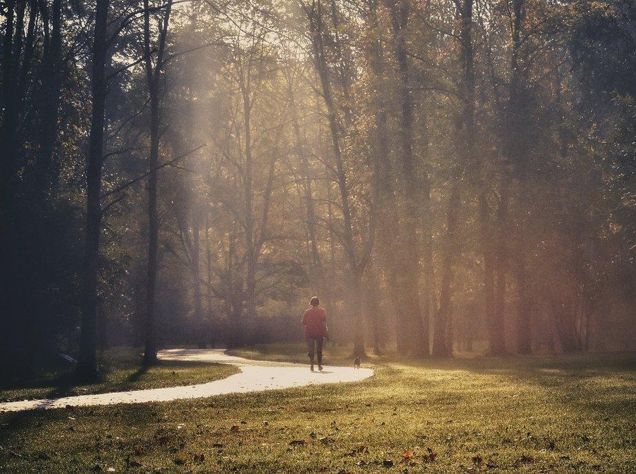 Foggy Morning Walk.