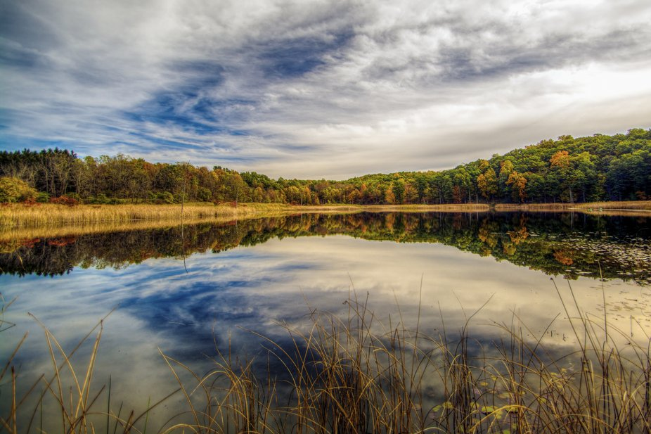 The beauty of this image is the sky and its reflection on the pond.  The gentile transition to fa...