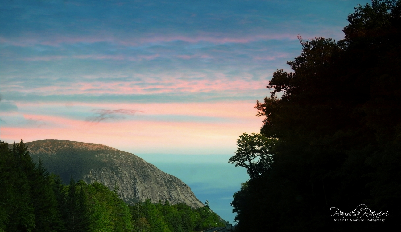 The White Mountains are a mountain range covering about a quarter of the state of New Hampshire and a small portion of Western Maine.  Most rugged mountains in New England.