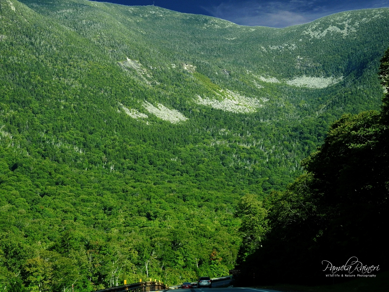 The Green Mountains are a mountain range in the U.S. State of Vermont.  The range runs primarily South to North and extends approximately 250 from the the border   with Massachusetts to the border with Quebec.