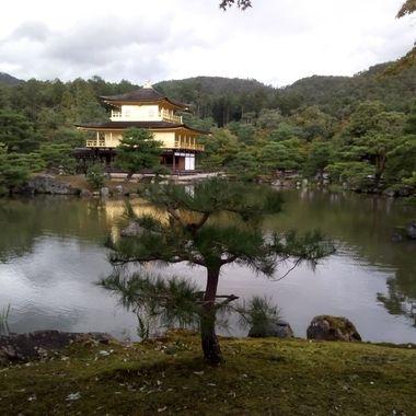 Kioto, japan golden pavilion