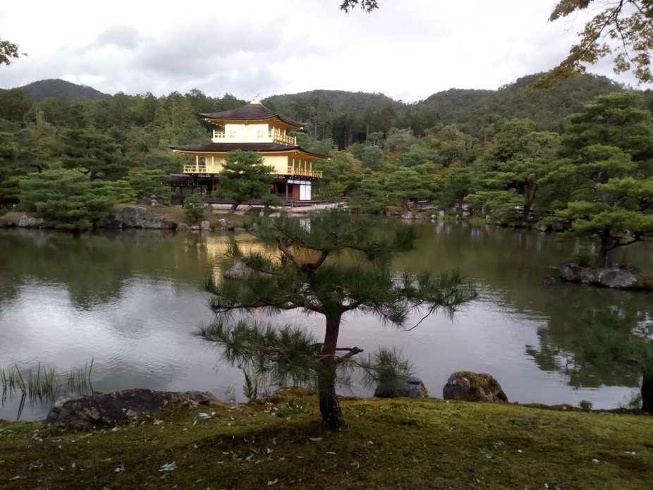 Kioto, japan golden pavilion